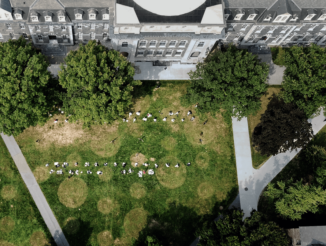 A grassy area with a building as seen from above.