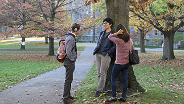 Three students on the Arts Quad in the fall.