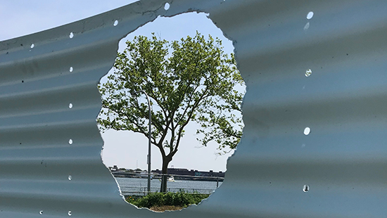 a tree framed through a hole cut into a light blue ridged piece of steel