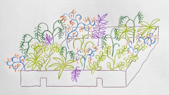 Colored pencil drawing of a raised bed garden