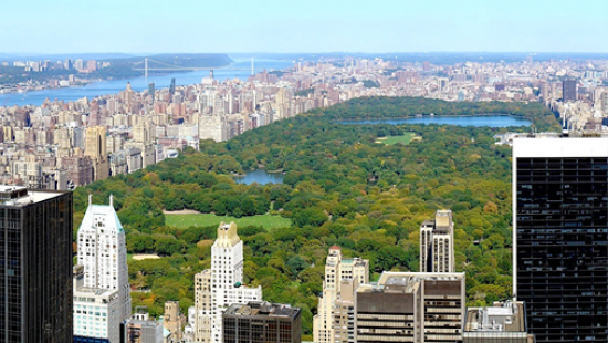 A vast green space and a lake, a river and suspension bridge, skyscrapers and urban buildings.