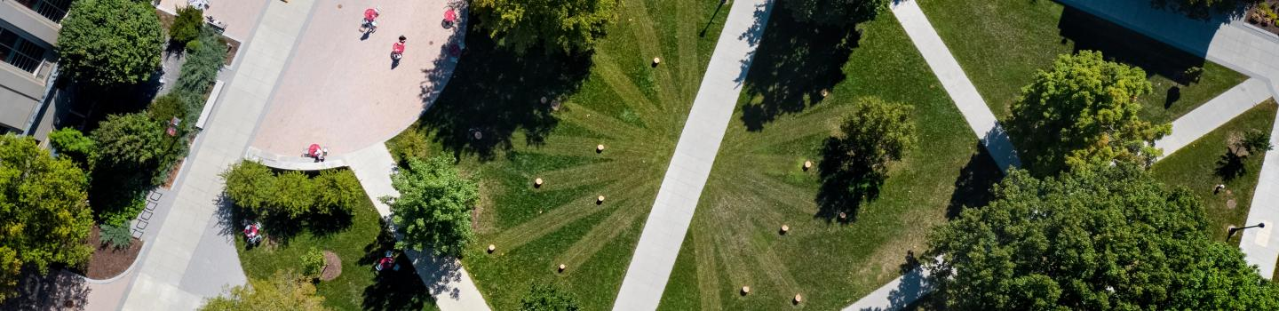 Grass, trees, and sidewalks with socially distanced individuals as seen from above.
