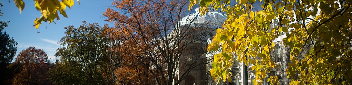 A domed building seen through colorful leaves