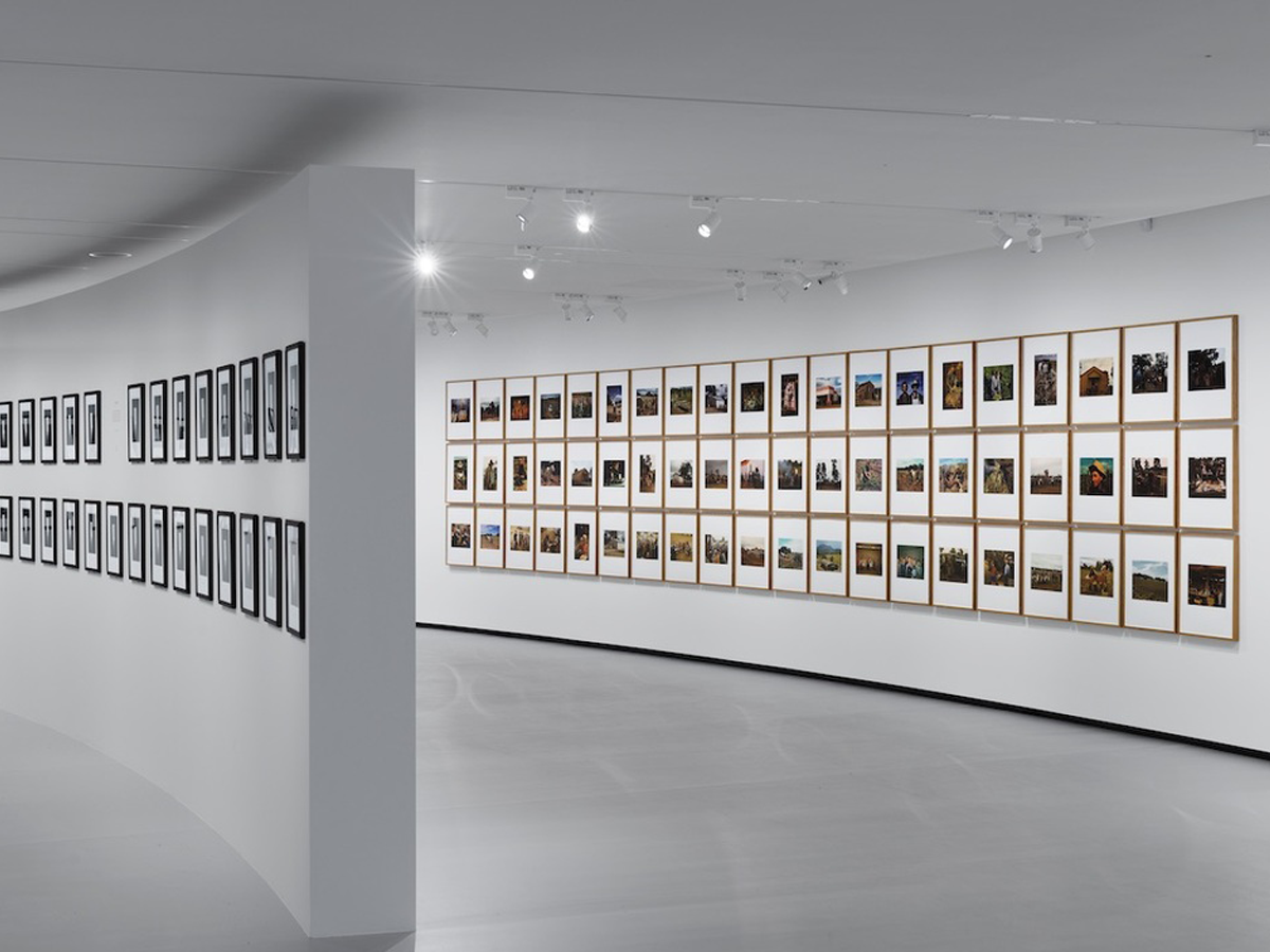 A white walled room with artwork displayed in rows.