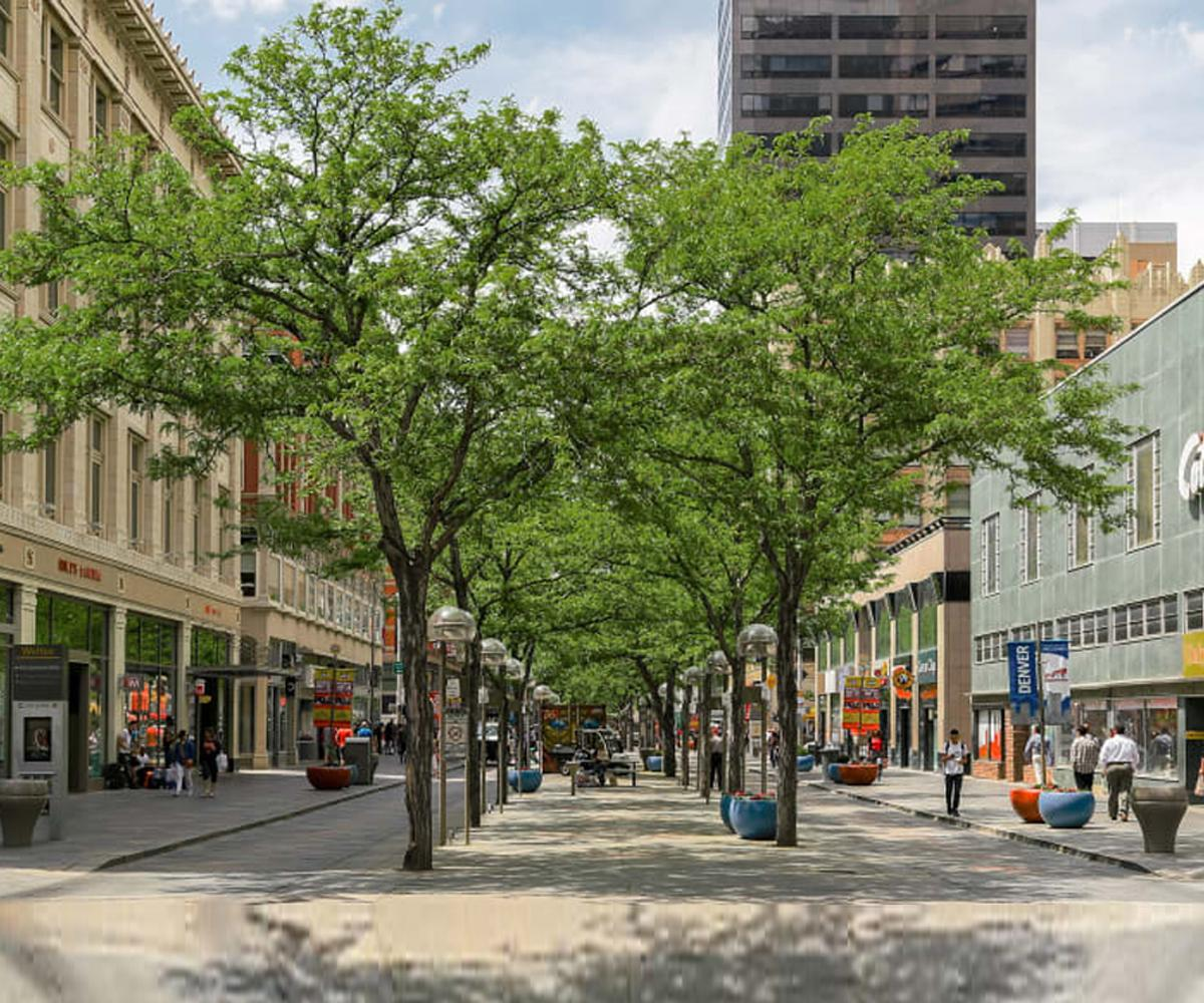trees in the middle of an outdoor shopping plaza with people on the sidewalks