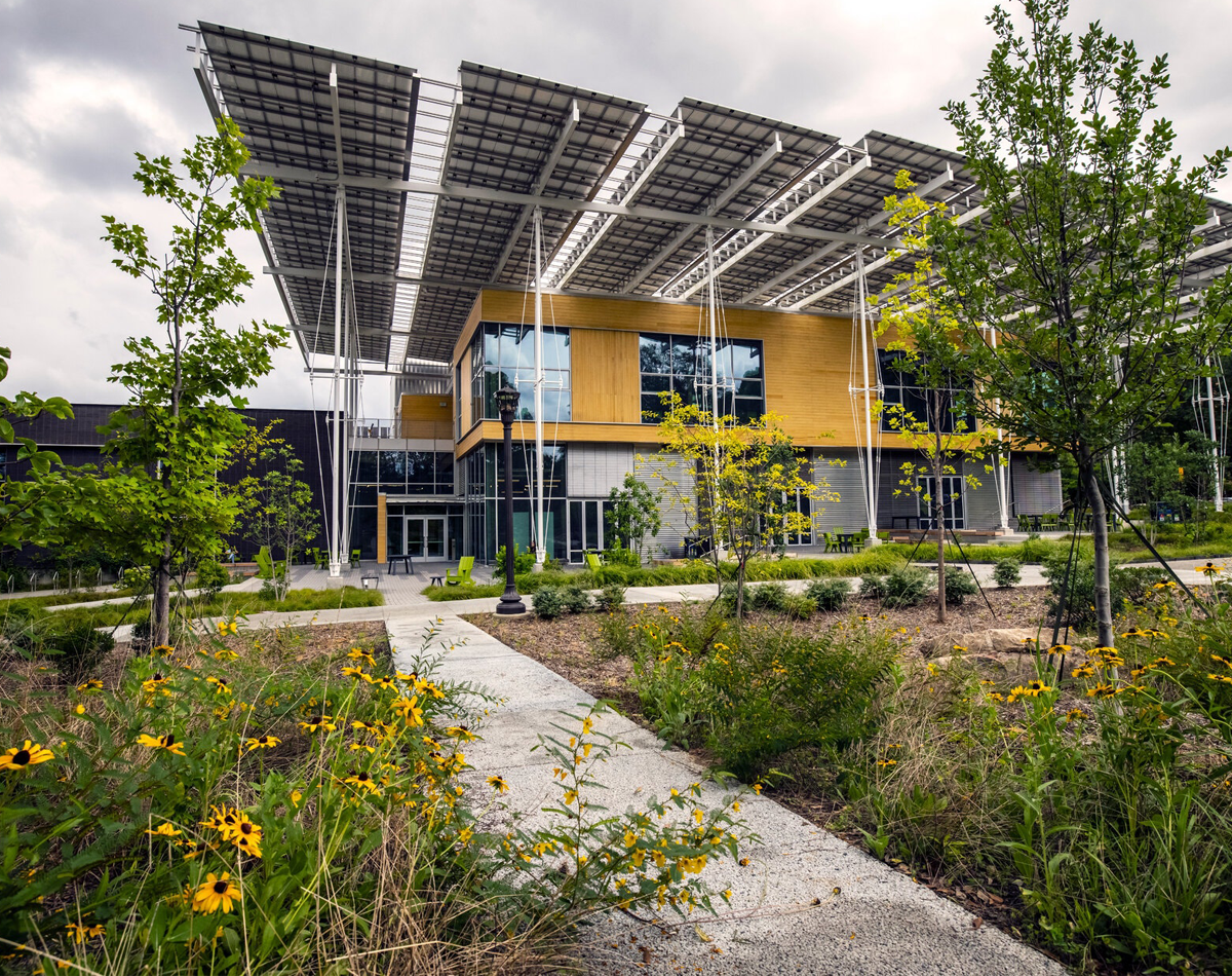 Wood sided two-story building with cantilevered solar panels and wildflowers.