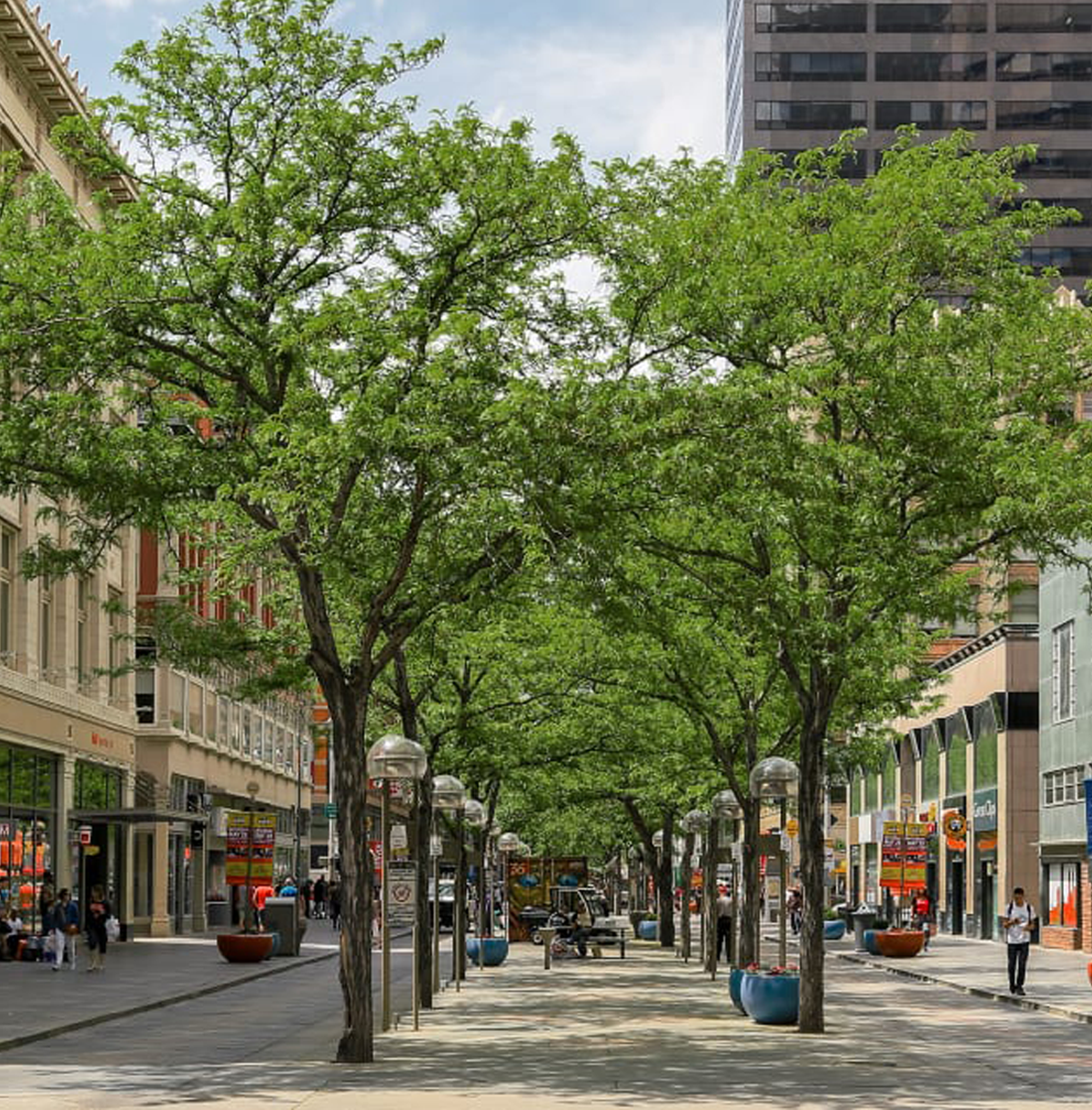 A pedestrian mall with trees and people between storefronts.
