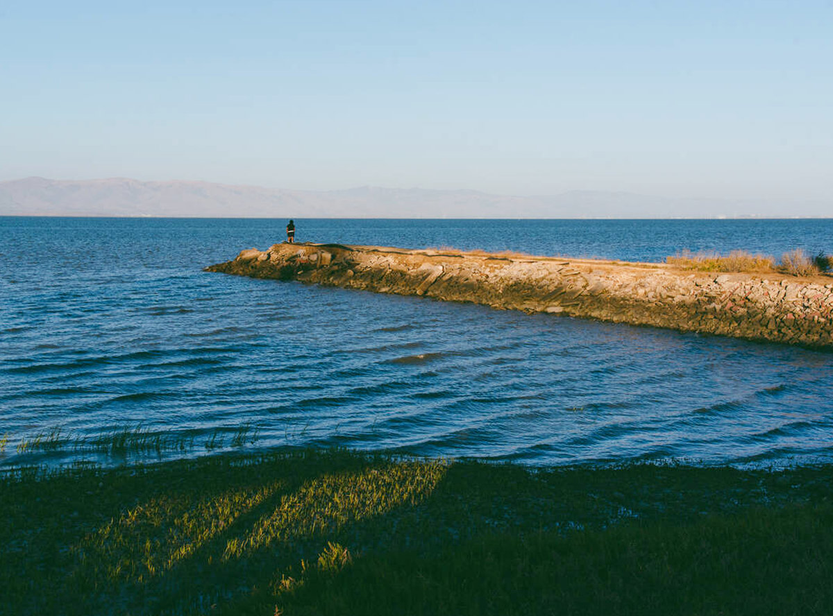 A person standing on a jetty surrounded by grass and the ocean.