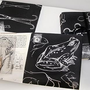 Text, ribbon, and depictions of frogs are part of two artist's books lying open on a table top