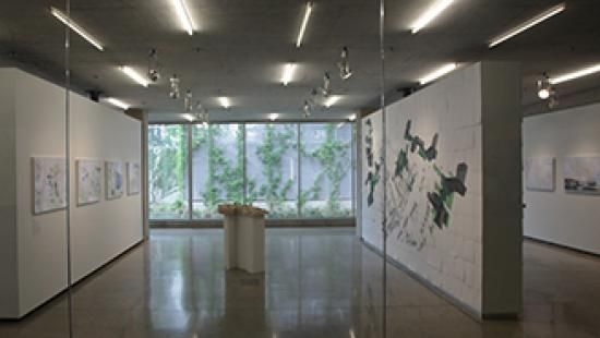 A view of the Milstein Hall Gallery exhibition Natural Selection.