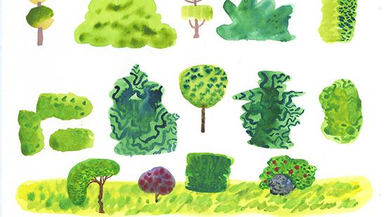 Different types of painted shrubs in various shades of green.