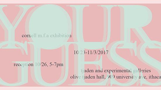 Poster of Your Guess exhibition in 3D lettering over a pink background.