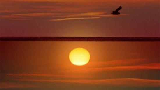 A yellow orb in a red sky, a bird flying.
