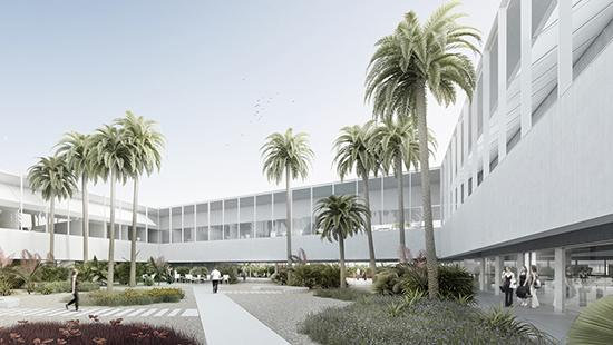 rendering of a courtyard with palm trees and open space with sidewalks surrounded by an elevated white building