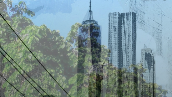 Cty skyscrapers, leafy trees, high-tension wires.