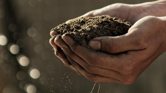 Soil cupped between two hands.
