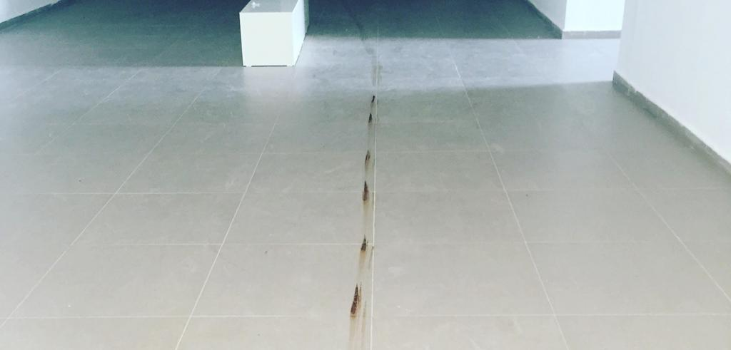 An image of a spotted line of ground coffee on a white tiled floor.