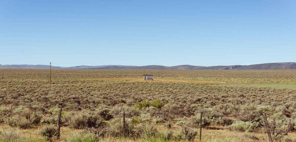 Large dry field of dried bushes clustered together with a small structure in the distance and mountains behind it.