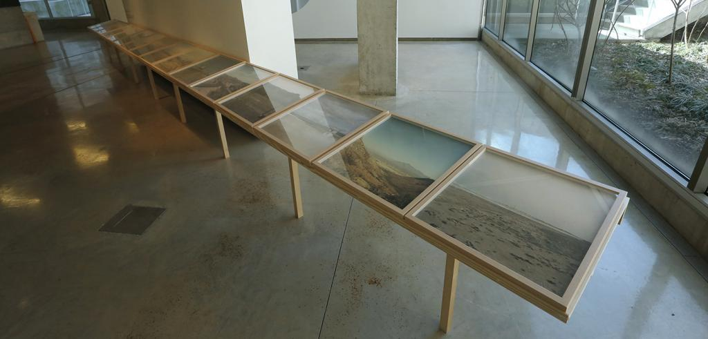 A custom display frame in a gallery holds a row of fourteen rectangular photographs.