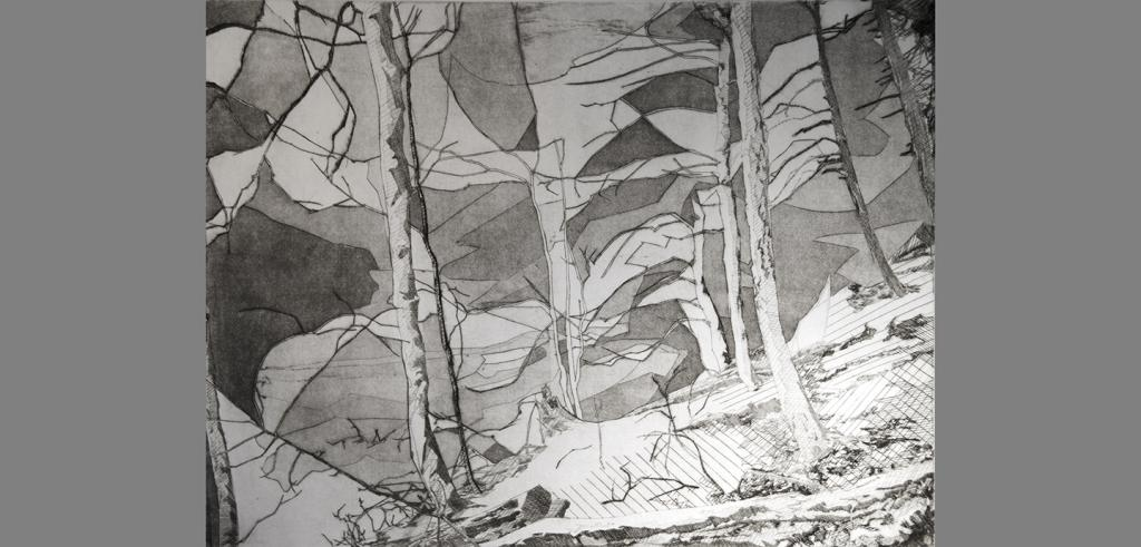 An engraving in shades of gray depicts stylized trees and leaf canopy