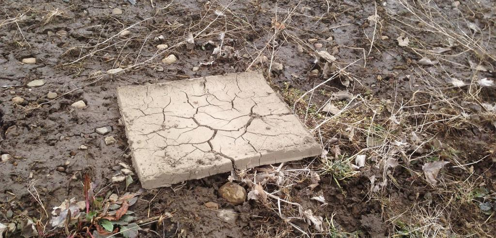 Square cracked patch of clay against a muddy and weed filled ground.