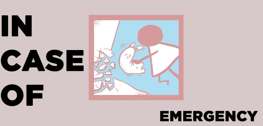 Pinkish gray background with the words 'in case of emergency' written around it with a cartoon image of a person trying to put a stuffed animal in a crack.