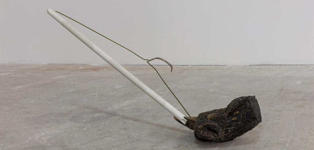 A wire coat hanger with a paper bottom being held by a part of an alligator claw.