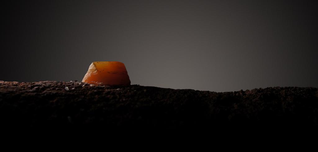 Photograph of wax sculpture