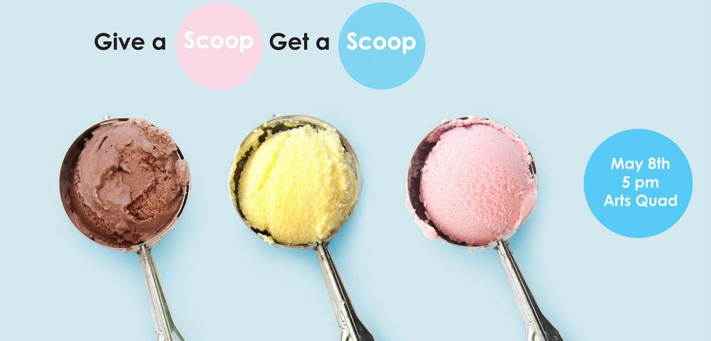 various flavors of ice cream inside scoops