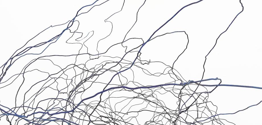 Dark blue and black squiggly lines on a white background.