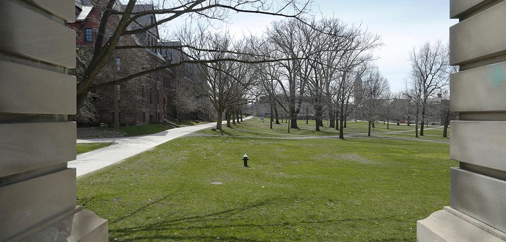 View of a green grass and treed expanse between stone buildings.