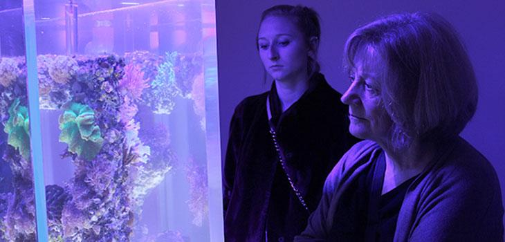 Student and Farver looking at exhibit in an ambient blue light