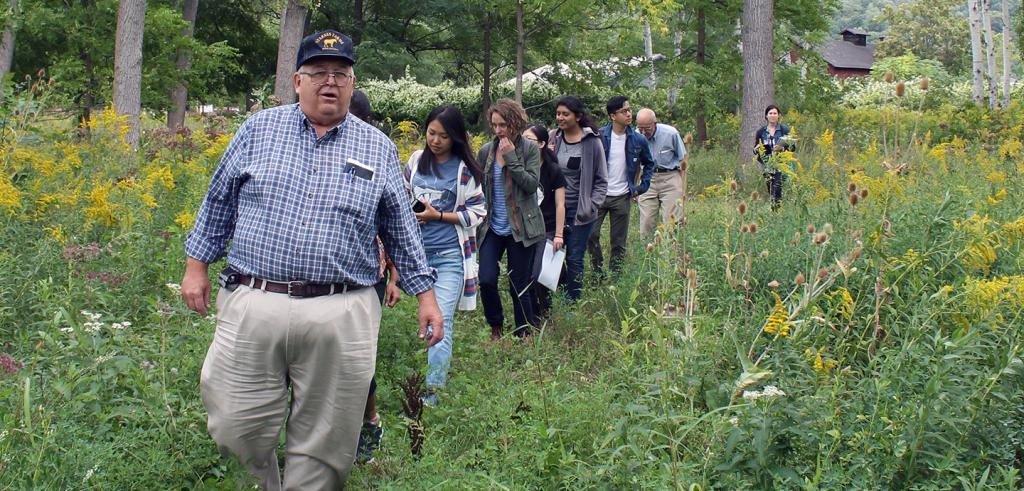 Man leading a single file group of people on a walk through tall green weeds
