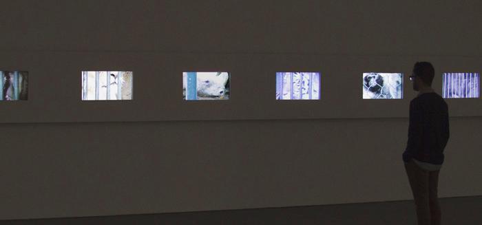 Man viewing back-lit art in a dark room