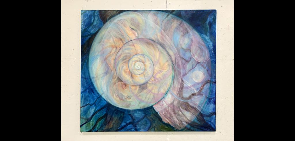 A nautilus shell in translucent hues of yellow, pink, blue and purple on a darker blue background