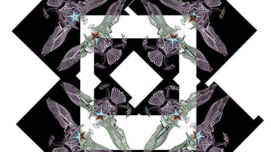 Print drawing of a kaleidoscope image of a bird against a black and white pattern background.