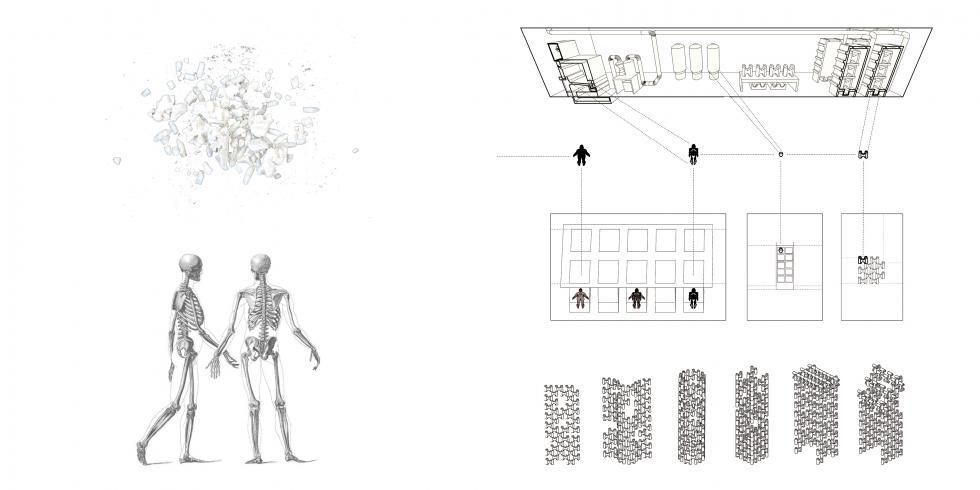 Drawing of two skeletons next to rectangular architectural studies.