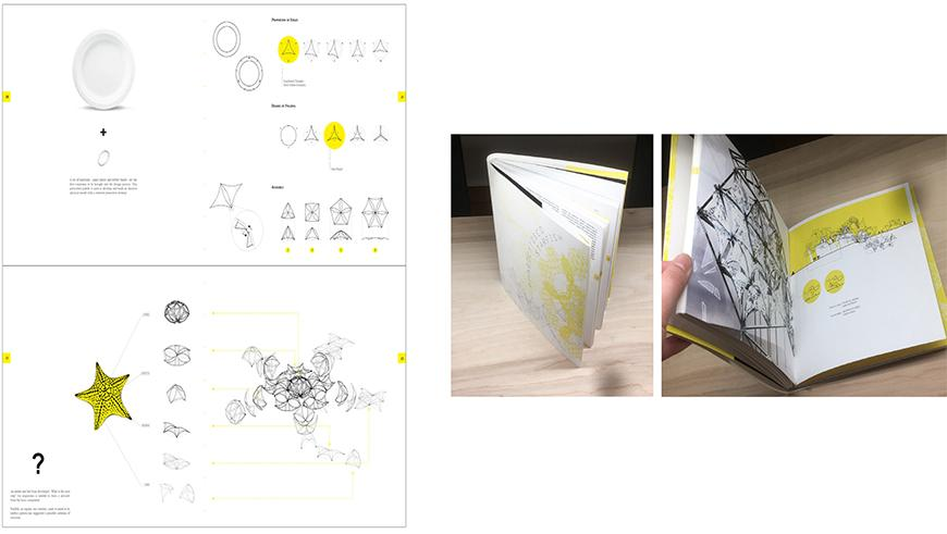 Pages with drawings on the left hand side and on the right two photographs of book with yellow colors.
