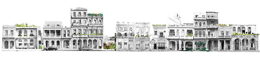 Collage of street elevations and facades of buildings in black and white photographs connected together with patches of greenery and vegetation collaged in.
