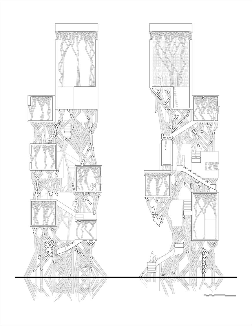 Black and white drawing of two different section cuts of the project.