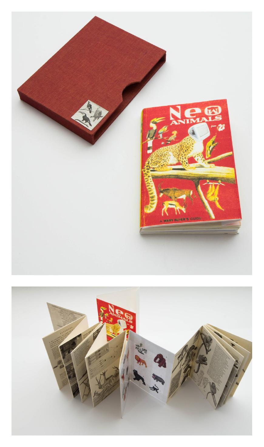 An accordion book.