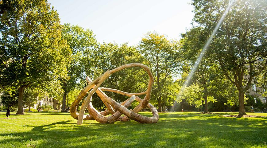 a log sculpture of a knot on a lawn