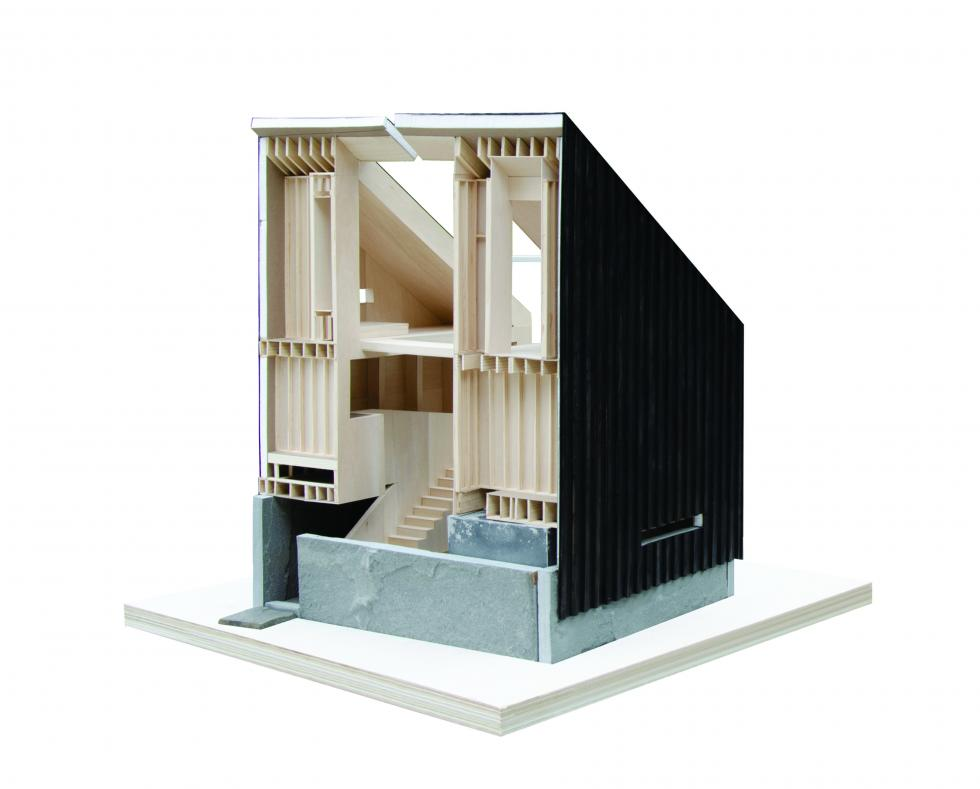 Photo of sectional model showing wood structure.
