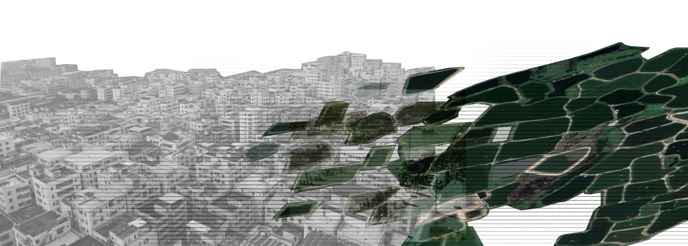 Collage aerial drawing with city grayscale under green vegetation