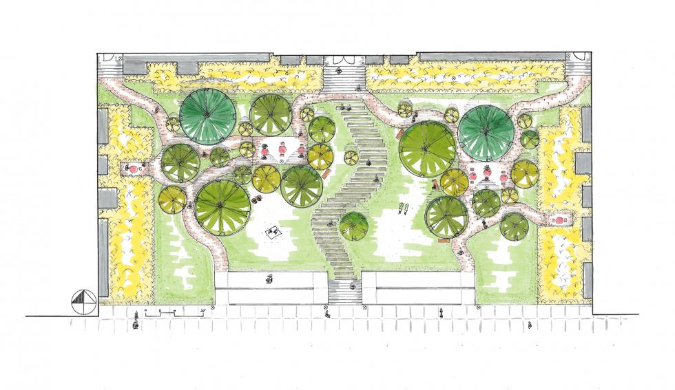 hand drawing of courtyard garden with green and yellow palettes.